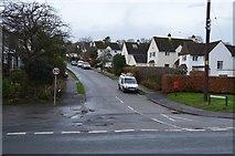 SX9575 : South Downs Rd by N Chadwick