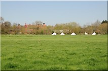 SO8352 : Tents at Manor Farm by Philip Halling