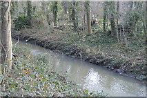 TQ2065 : Hogsmill River by N Chadwick