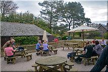 SX4268 : Cornwall : Cotehele by Lewis Clarke
