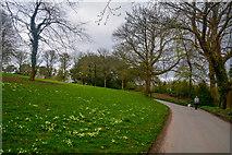 SX4268 : Cornwall : Footpath by Lewis Clarke