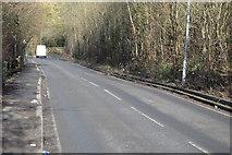 TQ2165 : Old Malden Lane by N Chadwick