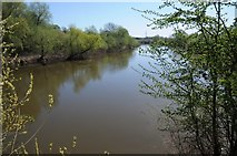 SO8552 : The River Severn by Philip Halling