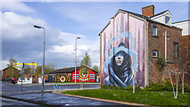 J3574 : Mural, Belfast by Rossographer