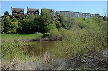 SO8552 : Houses and flats above the River Severn by Philip Halling