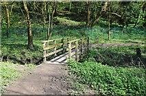 SO8552 : Footbridge crossing Duck Brook by Philip Halling
