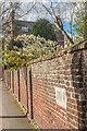 TQ2450 : Wall, West Street by Ian Capper