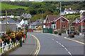 D3707 : The Coast Road at Ballygalley by David Dixon