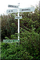 TG4901 : Signpost & Browston Lane sign by Adrian Cable