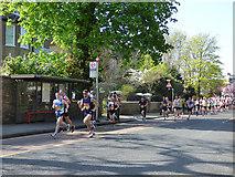 TQ4077 : London Marathon - the pack by Stephen Craven