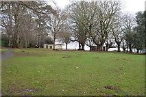 SX9676 : Grassy area by N Chadwick