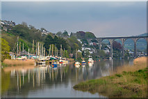 SX4268 : Cornwall : The River Tamar by Lewis Clarke