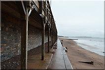 SX9676 : South West Coast Path by N Chadwick