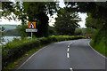 J4199 : A2 Shore Road, near Glynn by David Dixon