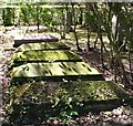 TG2108 : Sarcophagus-type gravestones in the gardens of remembrance by Evelyn Simak