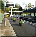 NS5574 : End of the line, Milngavie station by Richard Sutcliffe