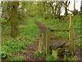 SJ9070 : Footpath towards Danes Moss Farm by Alan Murray-Rust