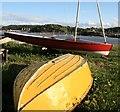 SH7779 : Cychod yn Neganwy / Boats in Deganwy : Week 18