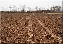 TR2257 : Footpath across ploughed field by N Chadwick