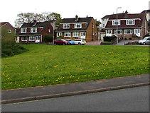 ST3090 : Alder Grove semis, Malpas, Newport by Jaggery