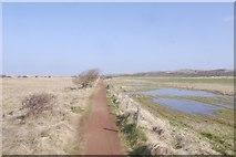 NT4681 : Path to Gullane Point by Richard Webb