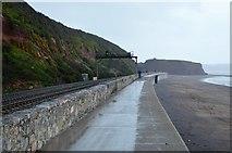 SX9777 : South West Coast Path by N Chadwick