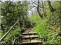 NZ1014 : Footpath to Whorlton from Whorlton Bridge by Jonathan Thacker
