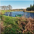 NH5143 : River Beauly by valenta