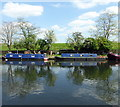 TQ3488 : Narrowboats on Lee Navigation by PAUL FARMER