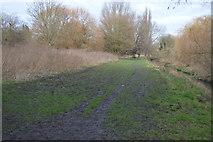 TQ2067 : Muddy London Loop by N Chadwick