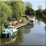 TL4097 : Boats on the River Nene (old course) near March, Cambridgeshire by Richard Humphrey