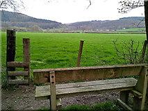 SN6772 : Pasture in the Ystwyth valley, Gelli Ddu by Rudi Winter