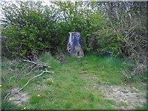 NS5161 : Alien trig point by Richard Sutcliffe