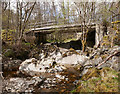 NH3739 : Bridge over the Neaty Burn by Craig Wallace