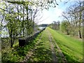 NY9676 : Dam, Hallington Reservoir West by Oliver Dixon