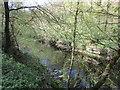 NZ0614 : The River Tees near Abbey Bridge by Jonathan Thacker