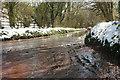 SX8964 : Cockington Lane by Derek Harper