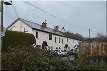 SX9779 : Terrace of houses in Eastdon by N Chadwick