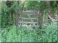 SO9147 : Broken down gate to woodland by Jeff Gogarty