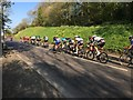 TA0386 : Tour of Yorkshire in Scarborough : Week 19