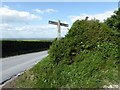 TQ5303 : Sign South Downs Way at Lullington by PAUL FARMER