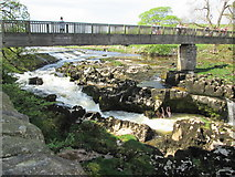 SE0063 : Footbridge  over  River  Wharfe  at  Linton  Falls by Martin Dawes