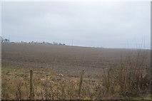TR2354 : Gently rolling farmland scenery by N Chadwick