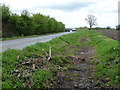 SE6554 : Drainage ditch, north side of Holtby Lane by Christine Johnstone