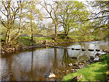 SD9771 : Stepping stones near Kettlewell by Stephen Craven