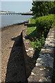 SX9272 : River wall, Keyworth Place by Derek Harper