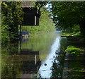 SJ7426 : Knighton Wharf along the Shropshire Union Canal by Mat Fascione