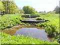 NY4635 : Outflow from the lake at Hutton-in-the-Forest by Oliver Dixon
