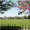 TG2308 : View across the Norwich School's cricket ground by Evelyn Simak