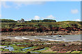 SM8010 : St Brides Haven and Castle by John Dalling